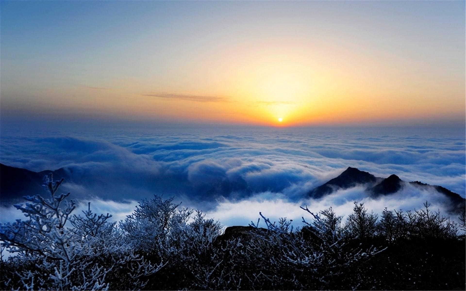 深圳天涯国际旅行社__国旅(深圳)国际旅行社有限公司
